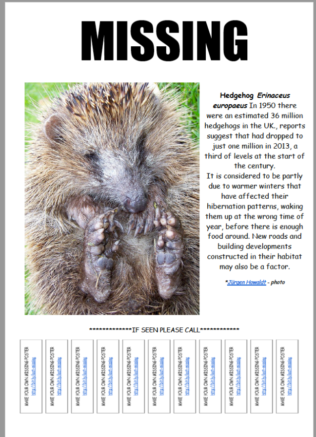 Lost and Missing Wildlife Posters to Download